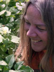 Birgit Brinkmann: Aktion Wildkräuter sammeln