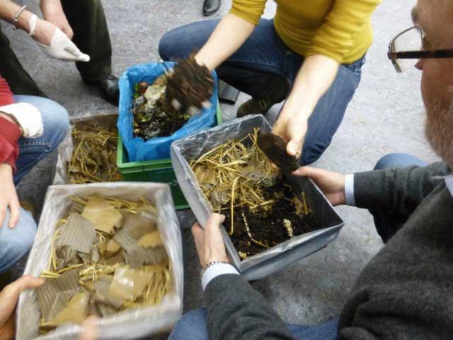 Wurmkiste selbst machen: Die Schichten anlegen