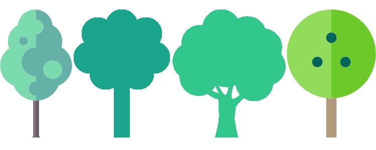 Natur schützen: Bäume sind Leben