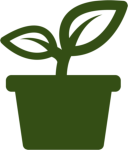 Thema: Grünes