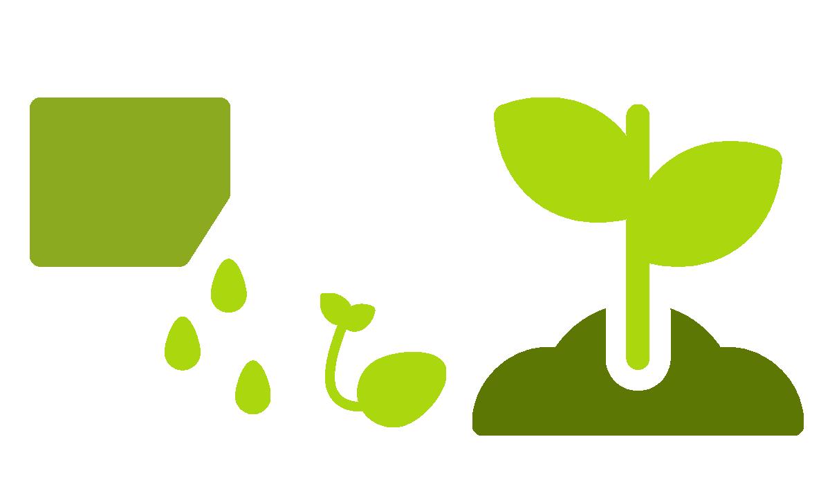 Sinnbaum: Dein Baum wächst