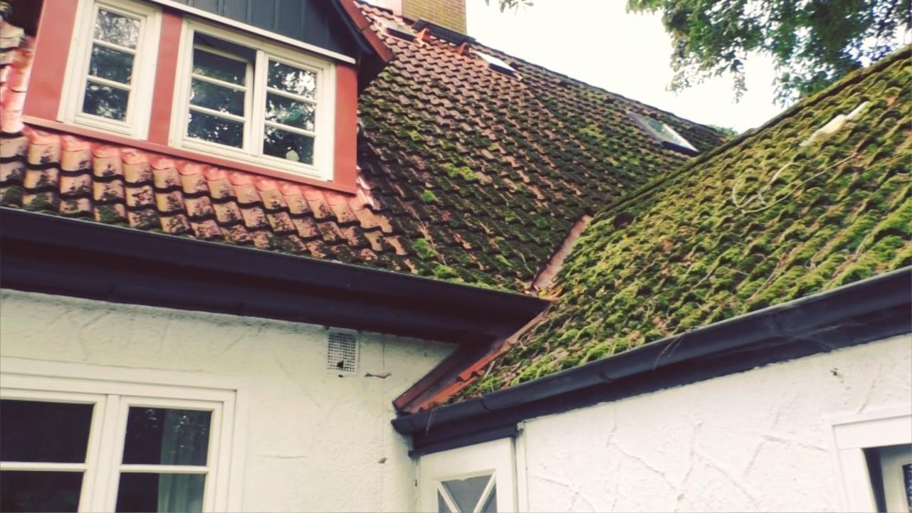Aktion Wohnglück-Check: Das Dach ist moosig, aber sonst gut erhalten