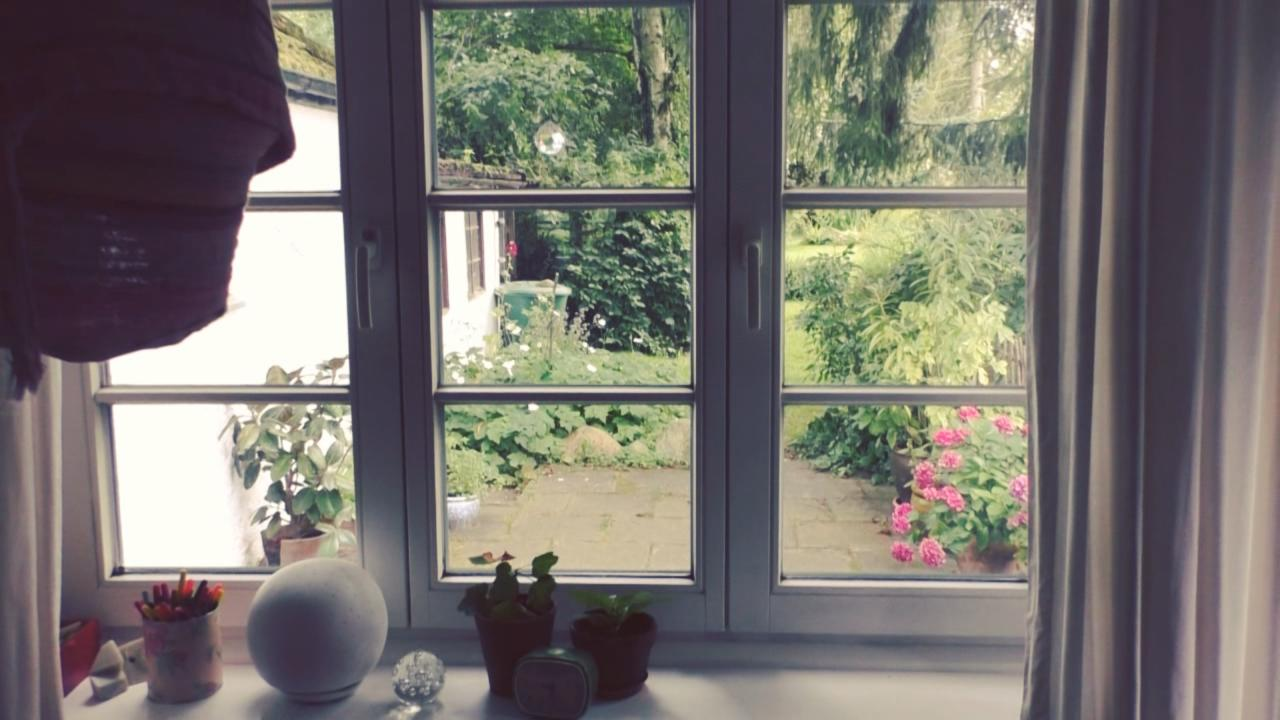 Aktion Wohnglück-Check: Ein Blick aus dem Fenster in den Garten