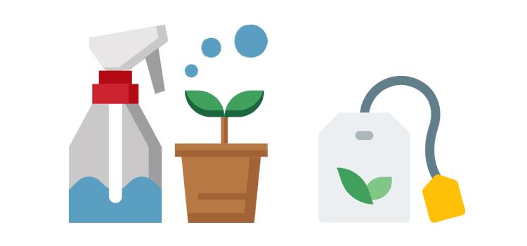 Komposttee für die Pflanzenfitness